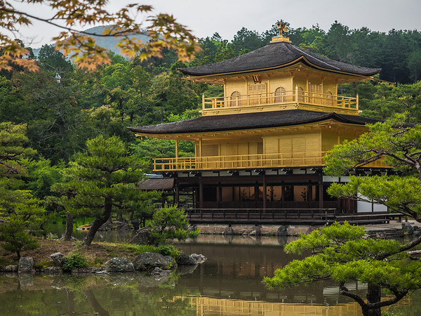 kinkakuji- the golden pavilion